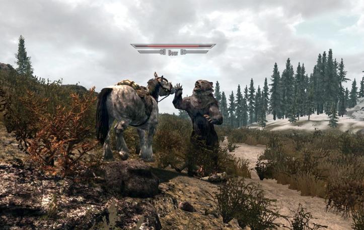 Bear Vs horse, Hoof Vs Claw!