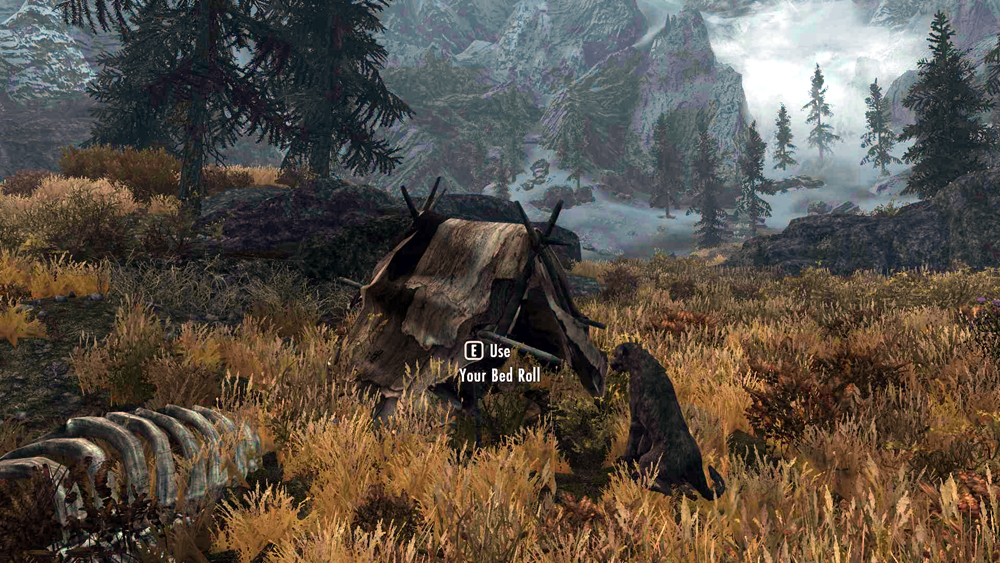 Meeko, tent, giant rib cage!