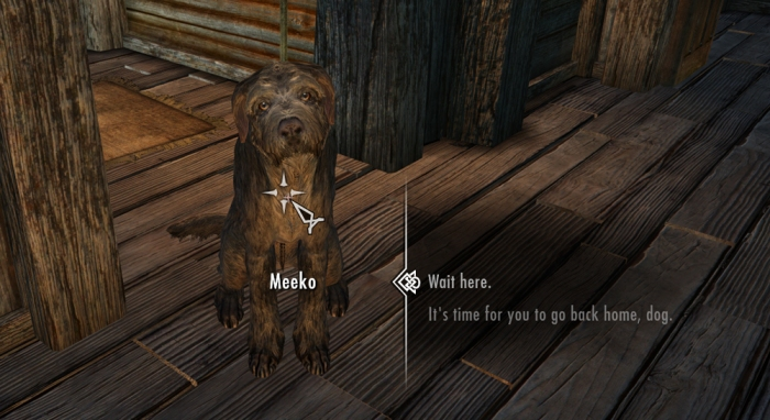Sit Meeko sit, Good dog