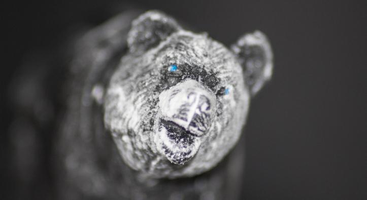 Look I'm a polar bear!